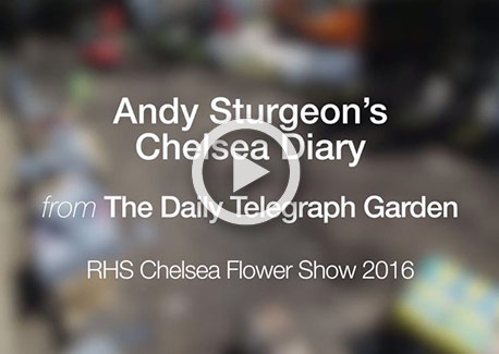 Andy Sturgeon's Chelsea Diary Episode 1