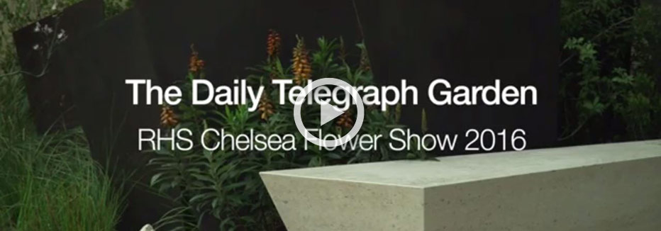 The Daily Telegraph Garden at Chelsea Flower Show 2016
