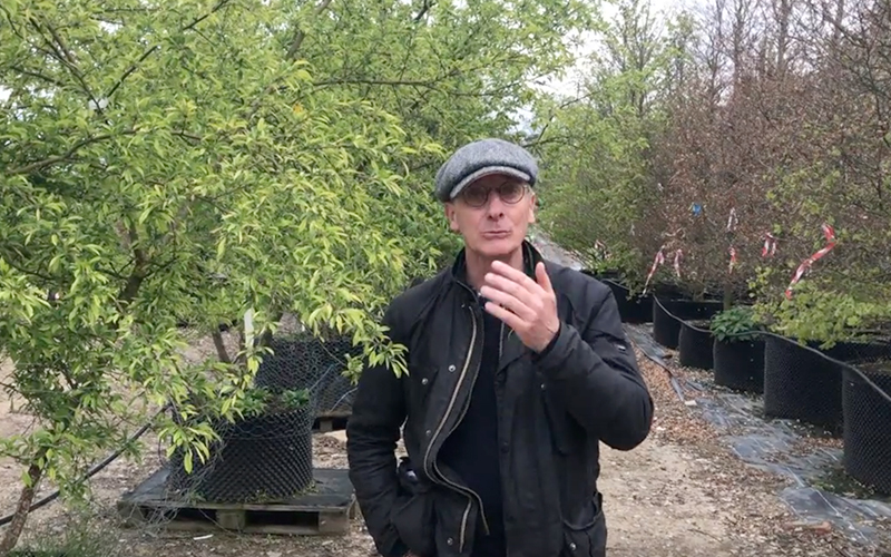 Preparing for the RHS Chelsea Flower Show with James Alexander-Sinclair - Part 2