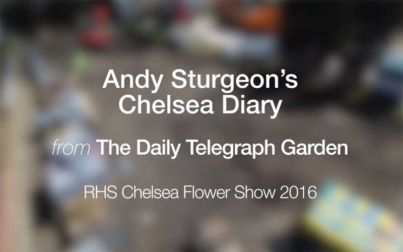 The Telegraph Garden Chelsea 2016 Episode 1