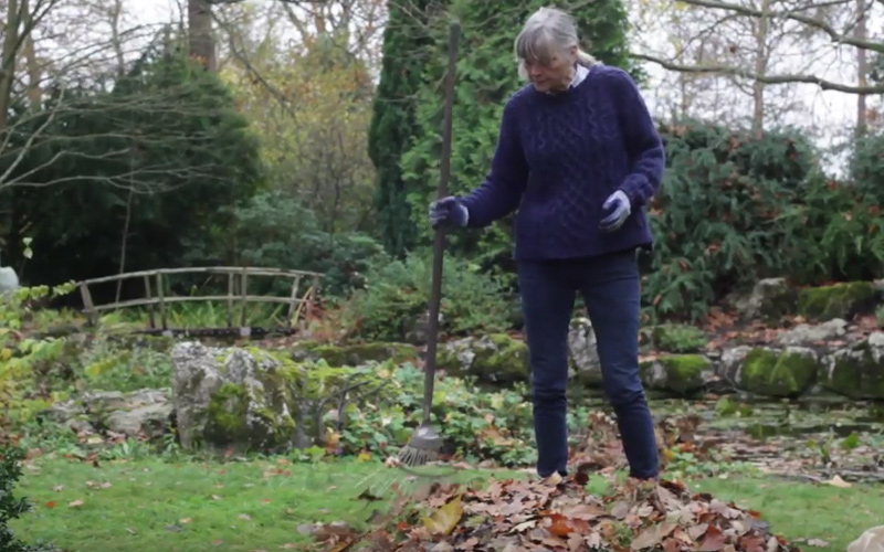 How to make leafmould