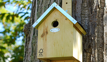 Garden wildlife for Types of birdhouses for birds
