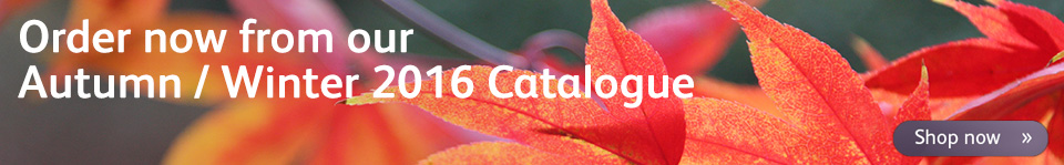 Shop our Autumn/ Winter catalogue 2016