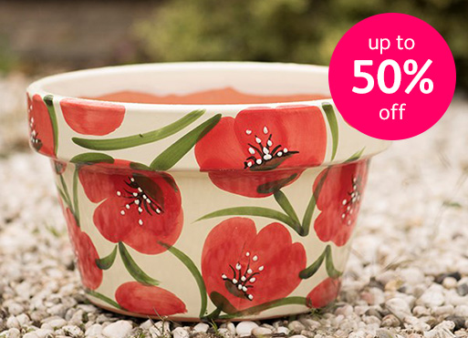 Pots & containers sale
