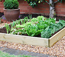 Raised beds & growbags