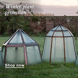 Winter plant protection