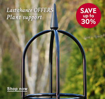 Last chance OFFERS Plant support