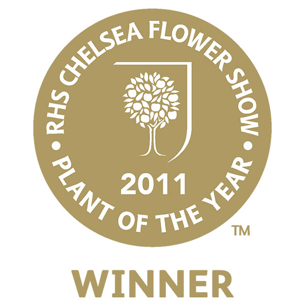 RHS Chelsea Flower Show Plant of the Year 2011