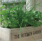 Herb kitchen garden kit