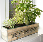 Mediterranean kitchen garden kit