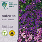Aubrieta Royal Series
