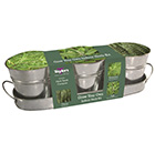 Zinc windowsill herb gift set
