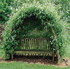 Willow kit for arbour or tunnel