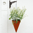 Large terracotta hanging basket