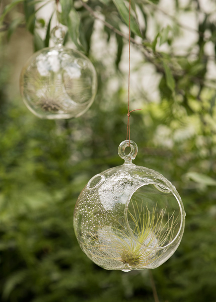 Buy large bauble tea light holder delivery by waitrose for Outdoor christmas baubles