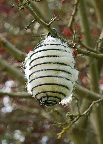 Wool spiral (but also great for suet balls)