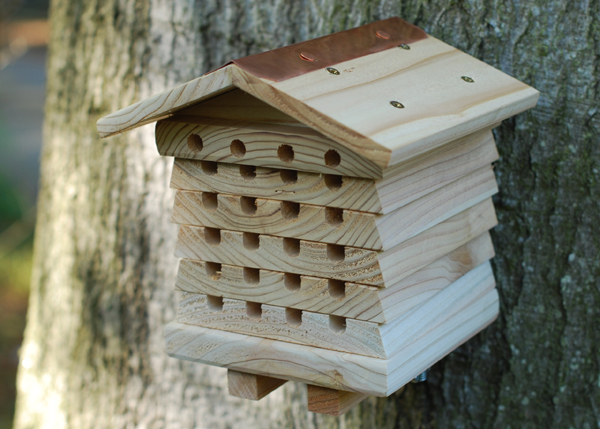 Buy solitary beehive habitat for Hive container homes