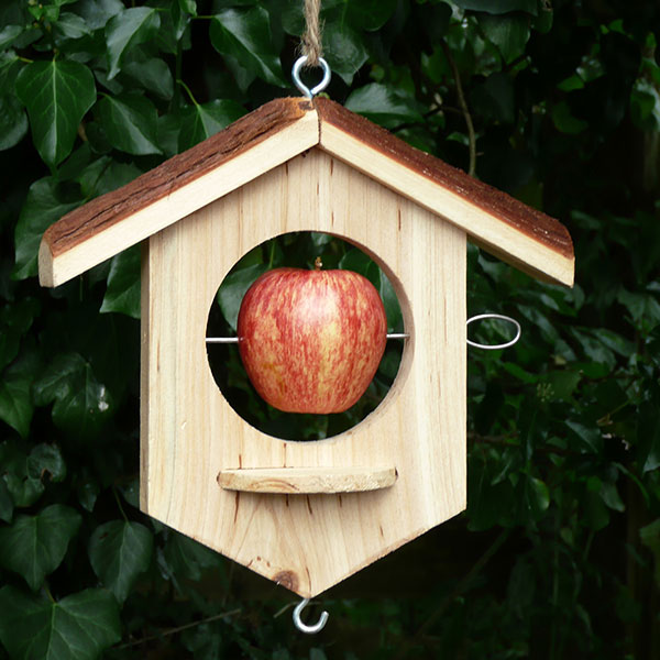 Apple / suet bird feeder