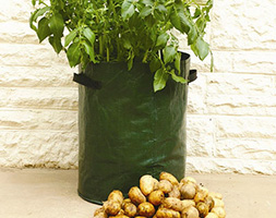 Potato planter bags 3 pack