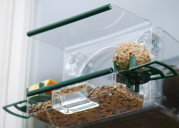 Complete window feeder for birds