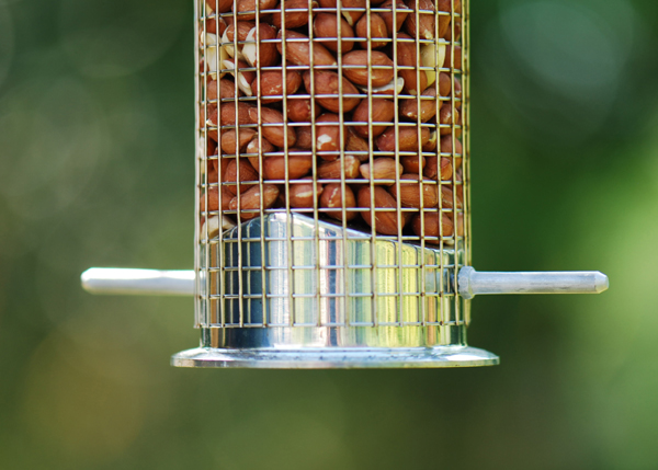 Heavy duty nut feeder