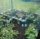 Low fruit cage for strawberries etc