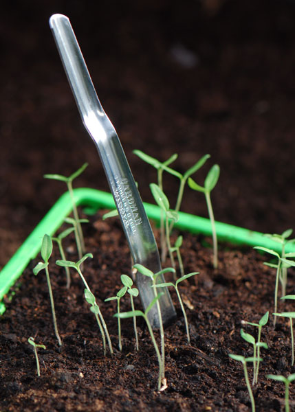 Seedling transplanting widger
