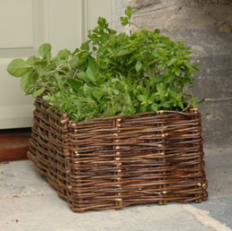 Image of Herb planting bag with natural willow surround