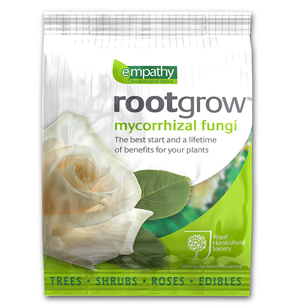 Empathy rose rootgrow