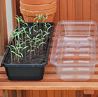 Windowsill unheated propagator