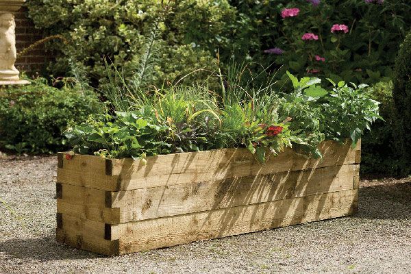 Buy Narrow Caledonian Raised Bed Delivery By Crocus