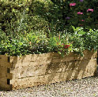 Narrow caledonian raised bed