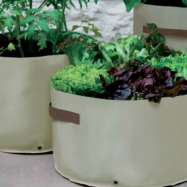 Buy vegetable patio planters for Flat pack garden decking