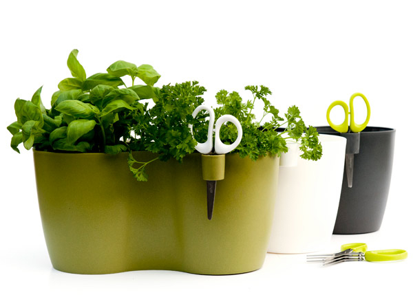 Double herb pot with scissors