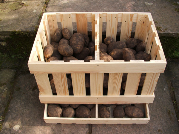 Potato storage