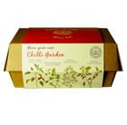 Kew grow your own chilli boxset