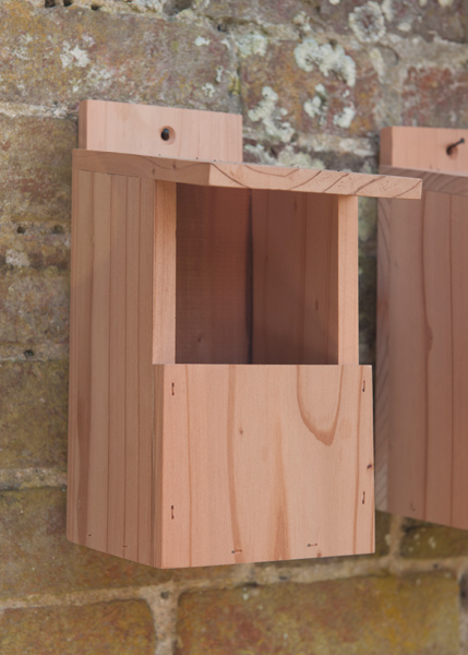 Cedar robin nest box