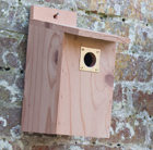 Cedar tit nest box