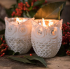 Scented soy wax owl candle