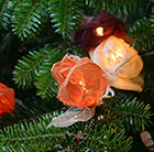 Autumn rose string lights