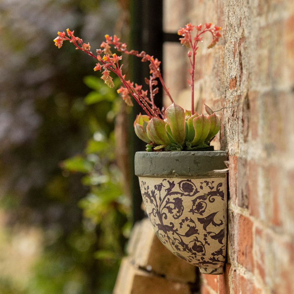 Buy Half Round Aged Ceramic Wall Planter Delivery By