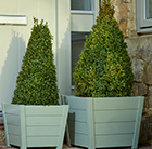 Olive green wooden planters