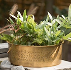 Hand etched brass planter