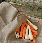 Rustic sack for roots and shoots