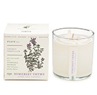 Plant the box candle gift set