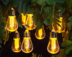 Click to view product details and reviews for 10 Edison Style Bulb Light String.