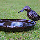 Metal kingfisher bird bath feeder