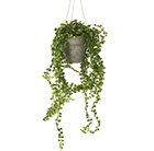 Artificial hanging willow