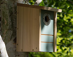 Bird Biome multi species nest box & feeder