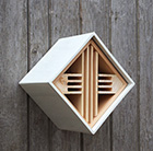 Urban insect box